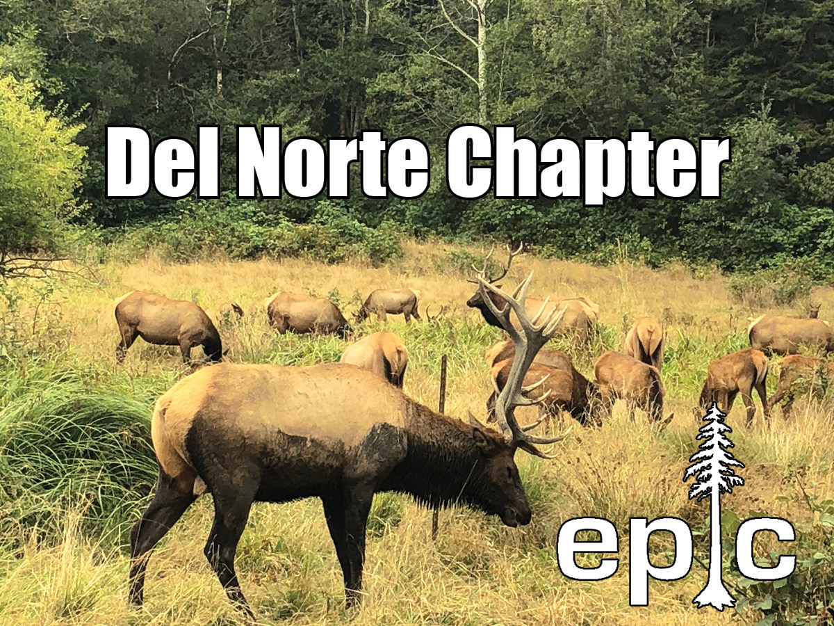 EPIC Del Norte Chapter Fund